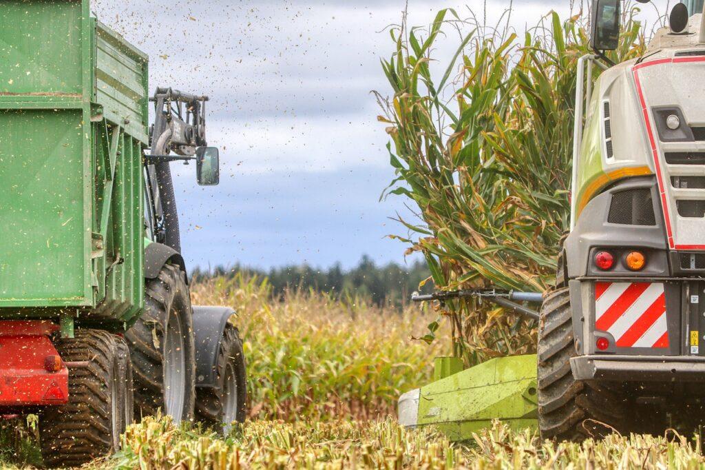 Jak przygotować kombajn do zbiorów kukurydzy?