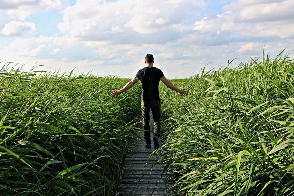 Rolnictwo w sieci, czyli skąd czerpać przydatne newsy